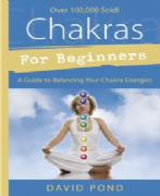 Chakras For Beginners - David Pond